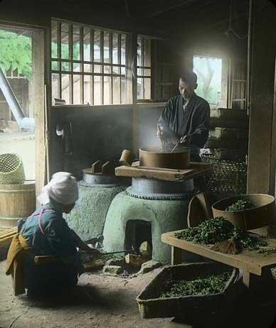 Elaboración Té Verde Japonés