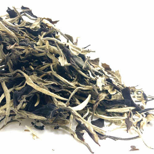 Té Blanco Moonlight Orgánico