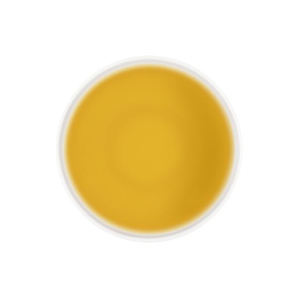 Infusión de frutas Mango 'n Friends Detalle
